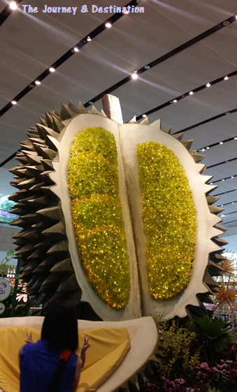 Large Durian