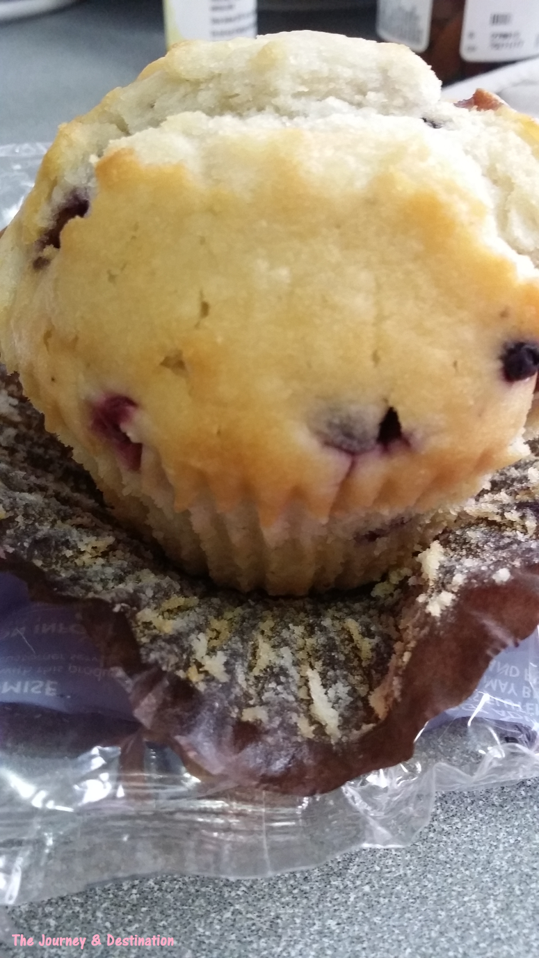blueberry-muffin-3